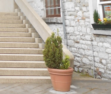 Bepflanzung beim Hausverkauf