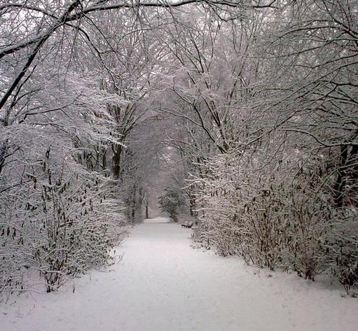 Heizkosten im Winter senken