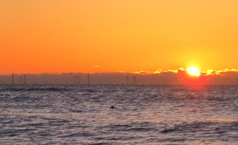 Windpark vor der niederländischen Küste