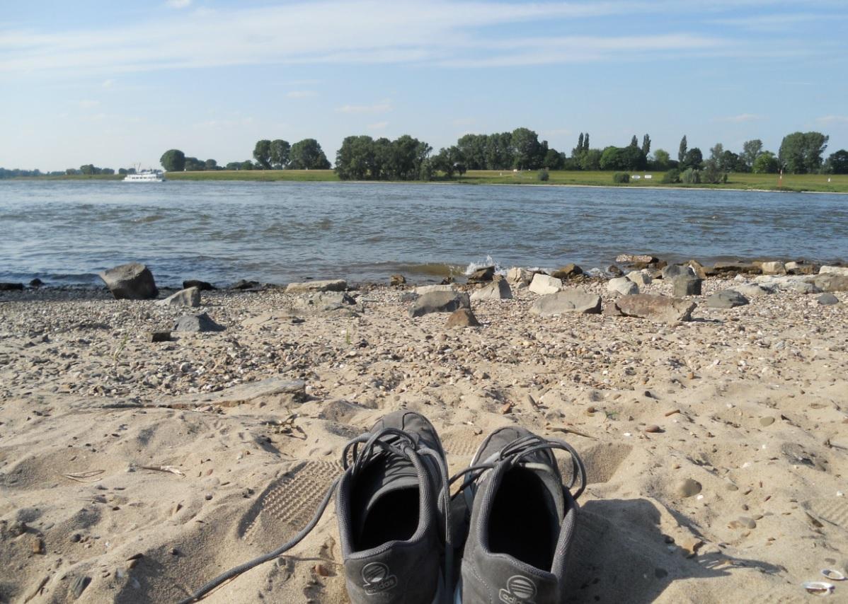 Rheinblick ist in Düsseldorf gefragt