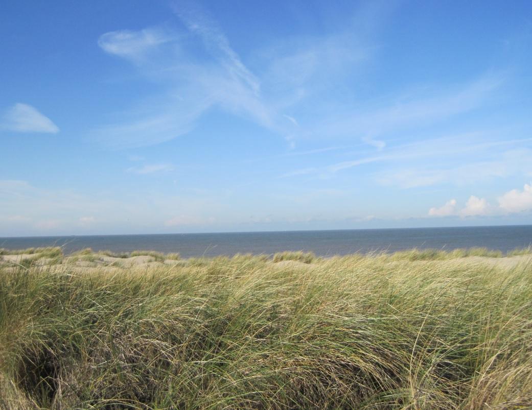 Die Küste in Zeeland